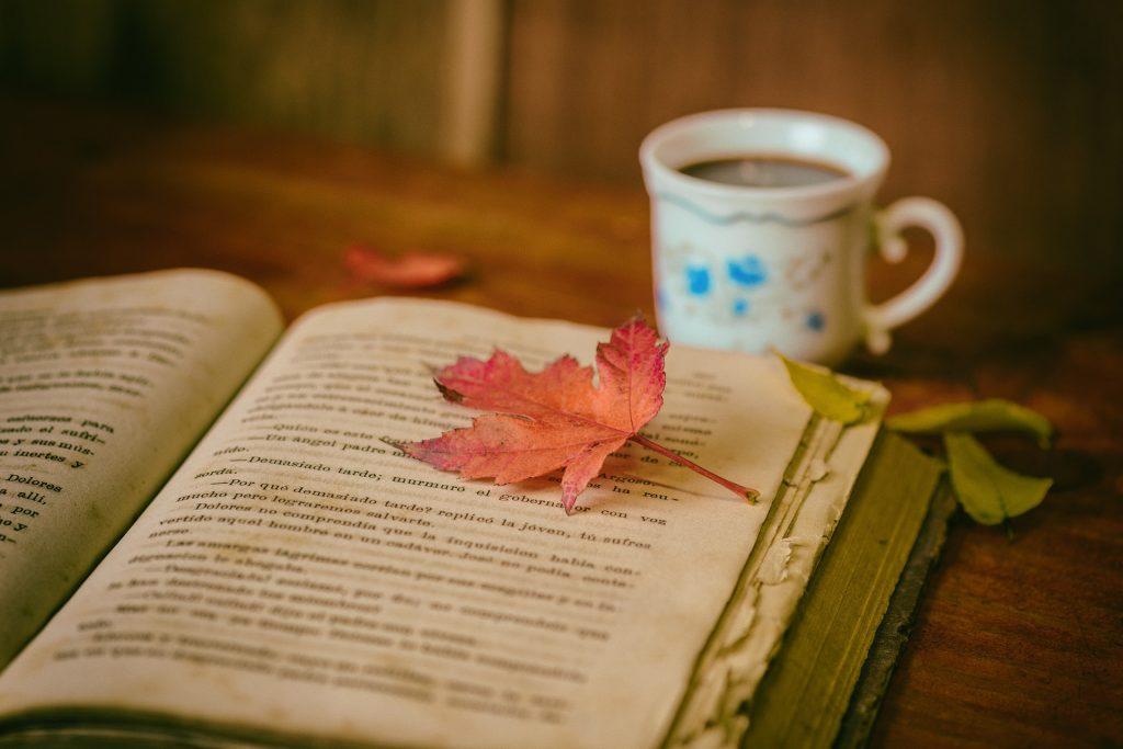 Fritelle sucon suchela la favola-libro con foglia e tazza