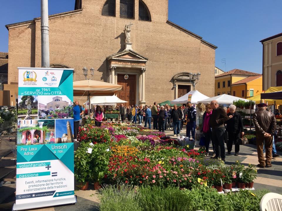 Adria in fiore- Piazza Garibaldi gremita