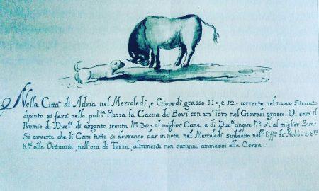 Ecco Perché Il Toro Accomuna Adria A Venezia