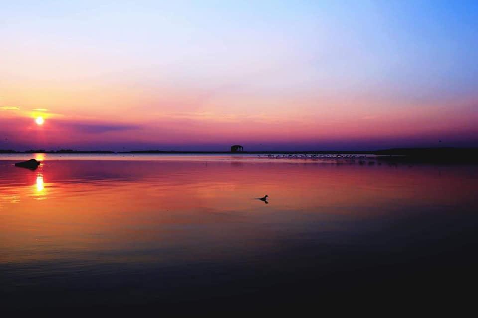 un lavoro meraviglioso- i colori del delta del po
