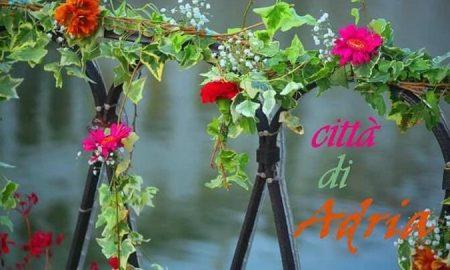 Cropped Adria Immagiane Con Fiori.jpg