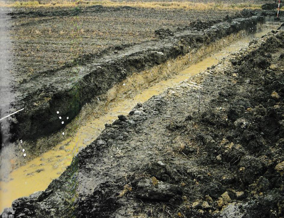 Scavo Archeologico Lungo La Via Annia