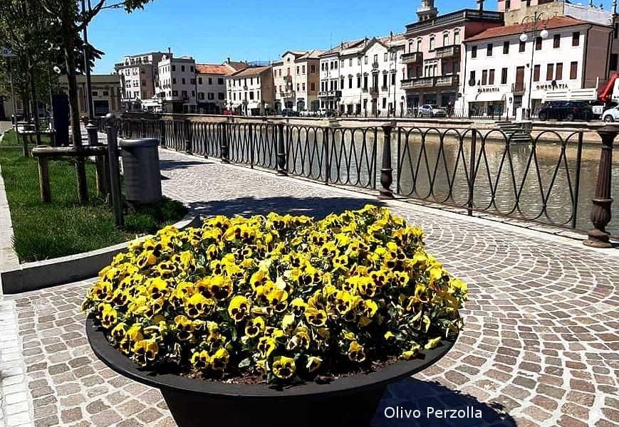 Adria Riviera