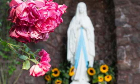 Immacolata Statua Con Rose