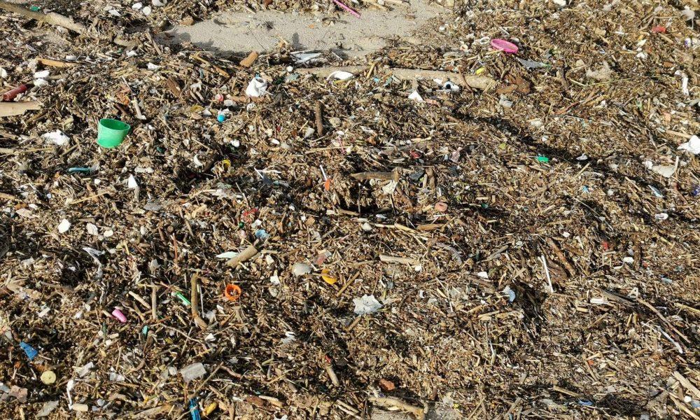 Plastica Nelle Spiagge.