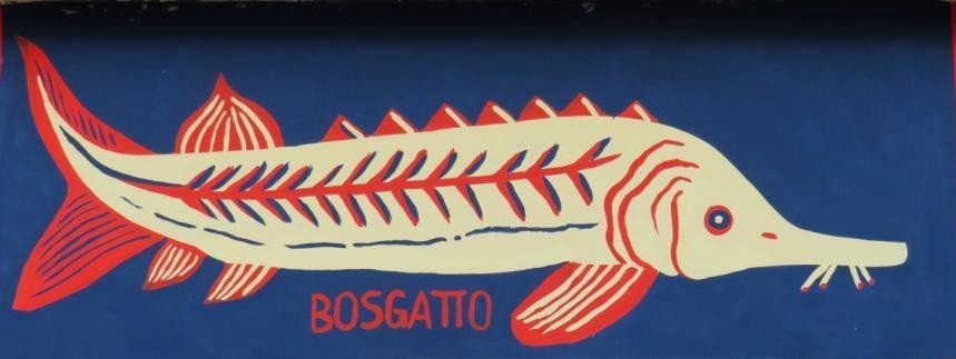 La Tamisiana Repubblica di Bosgattia Bosgatto