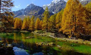 Paesaggio In Valle d'Aosta alberi e montagne