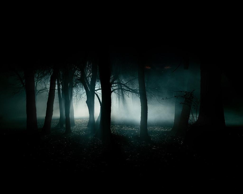 Leggenda del Lago Blu - un Bosco Di Notte