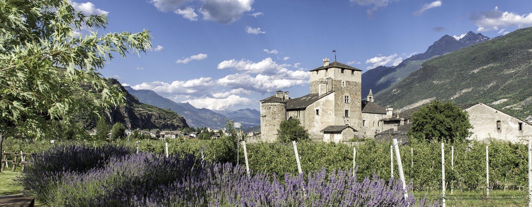 castello sarriod - panorama