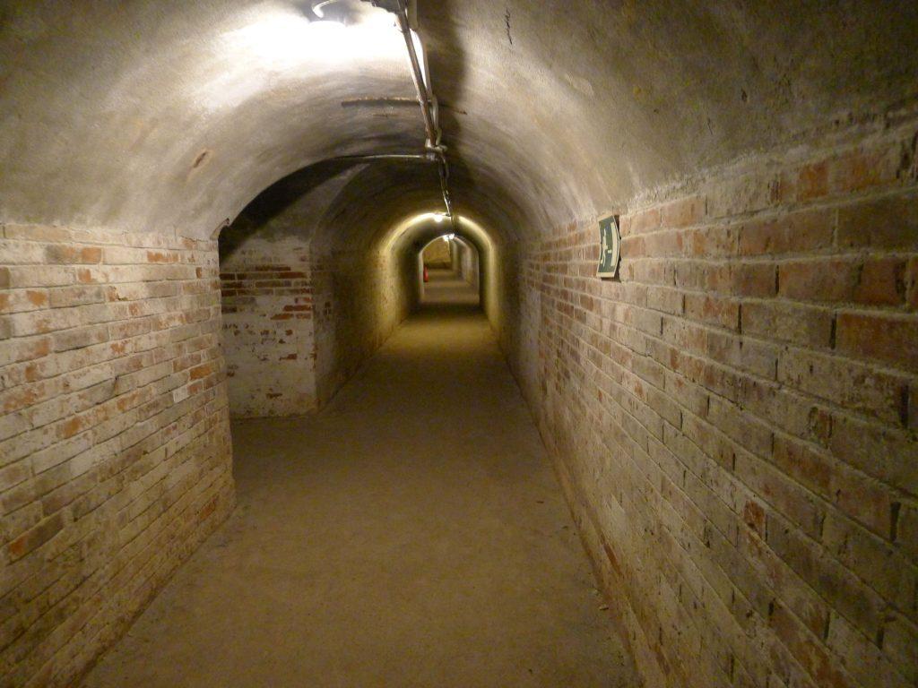Refugio 307 - interno del rifugio