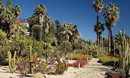 Giardino Mossen Costa i Llobera - panoramica del Parco