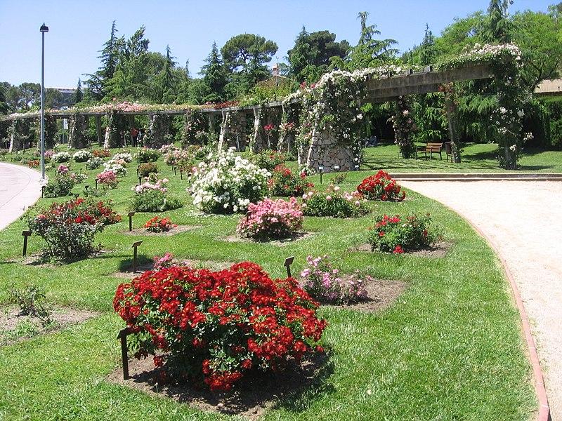 Parc de Cervantes - panoramica del giardino