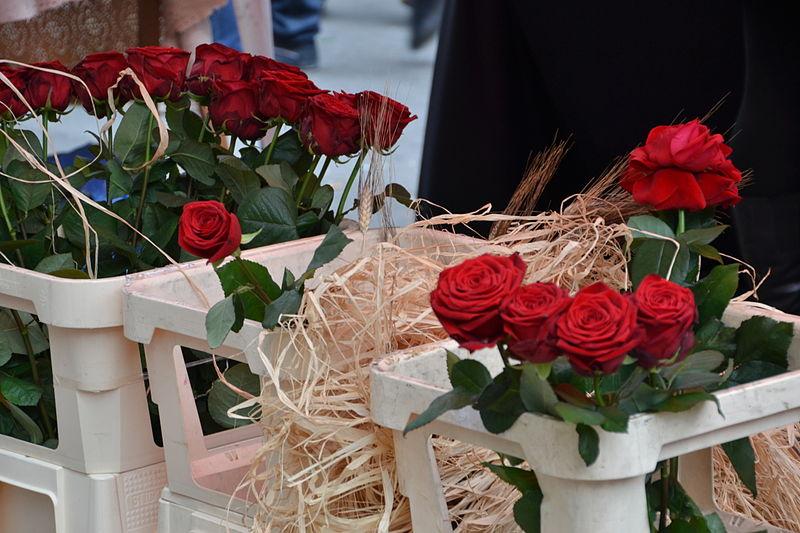 Rose vendute per la diada Sant Jordi