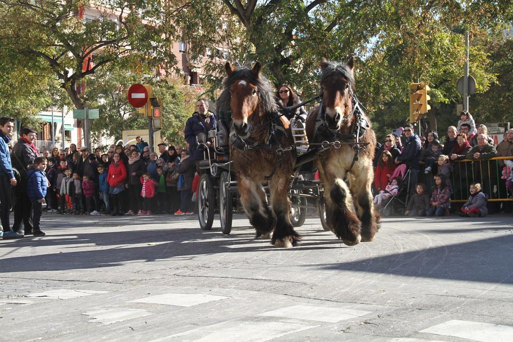 Festa Major de Sant Antoni- sfilata di Carri