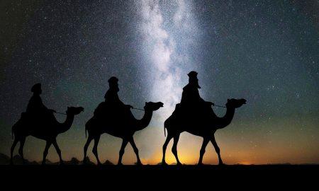 Cabalgada de Reyes Magos- Camels