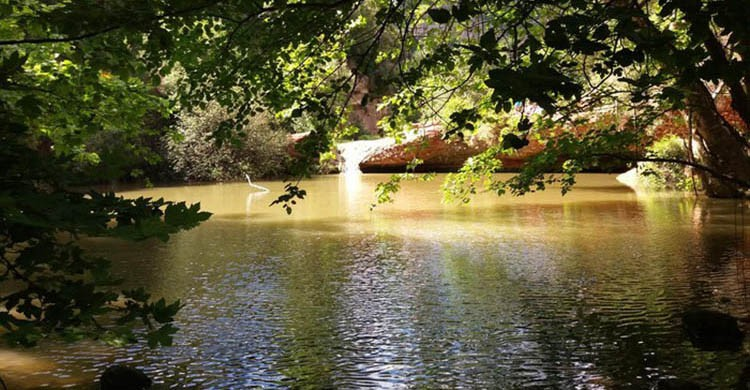 piscine naturali-Gorgs Del Riu Tena