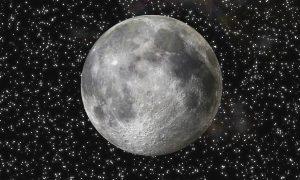 Rosedal - Evento bajo la luna llena