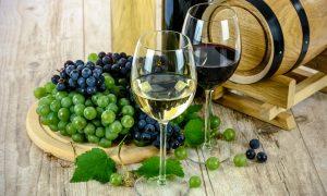 Vinos Friulanos - Vino Blanco Y Tinto