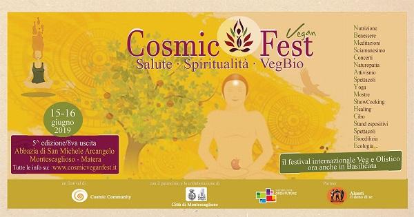 Cosmic Community - Flyer de Cosmic Fest
