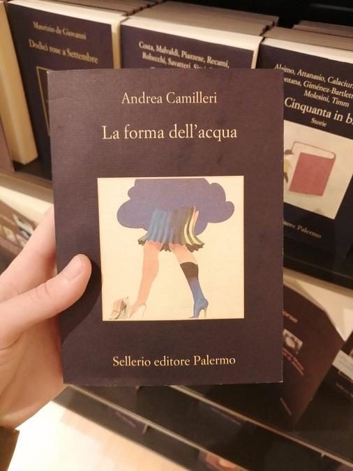 verano de novela - La Forma Del Agua