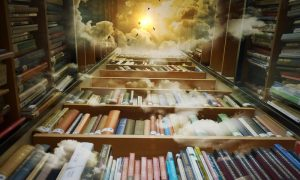 mi casa - Biblioteca