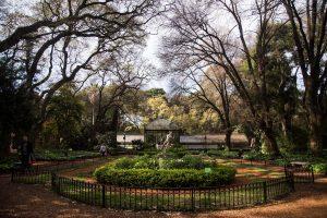 reapertura - Botanico