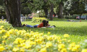 Primavera - Los Bosques de Palermo en la Ciudad de Buenos Aires