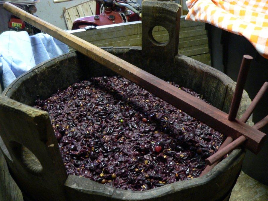 Mosto d'uva usato per il Pan di Sapa