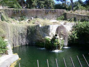 Orto Botanico Di Cagliari 15