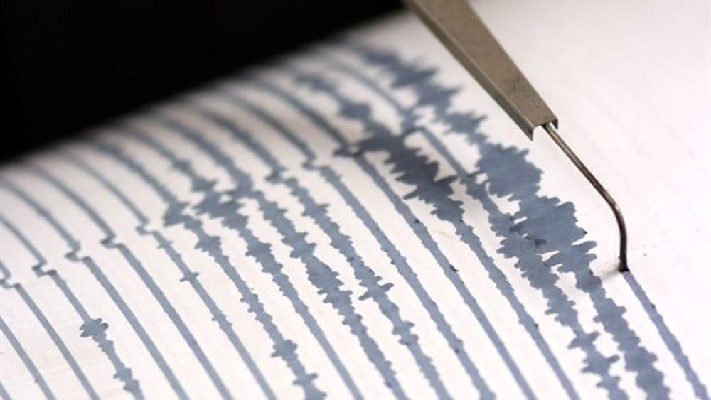 Terremoto e Cagliari. Esempio di registrazione delle scosse con l'utilizzo di un sismografo (Fonte Avellino Today)