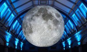 Installazione Museo Della Luna al Natural History Museum di South Kensington