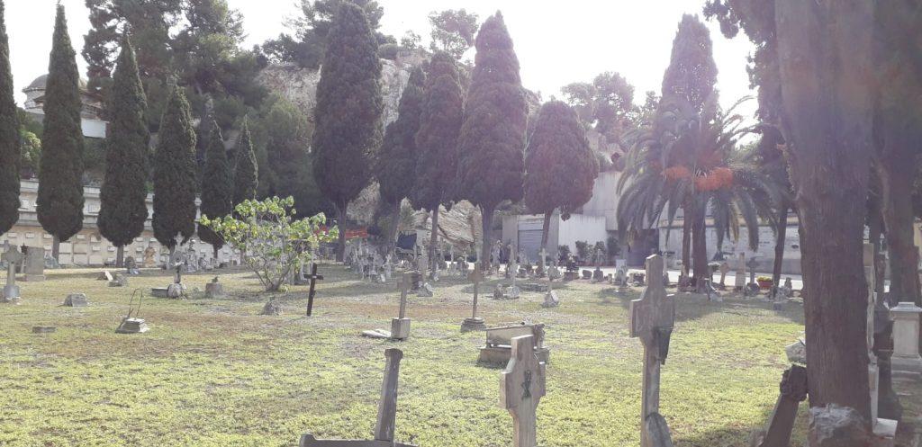 Cimitero Bonaria, lapidi, tombe, alberi, prato
