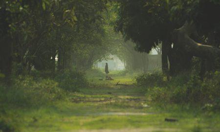 Panas - Una donna attraversa il bosco