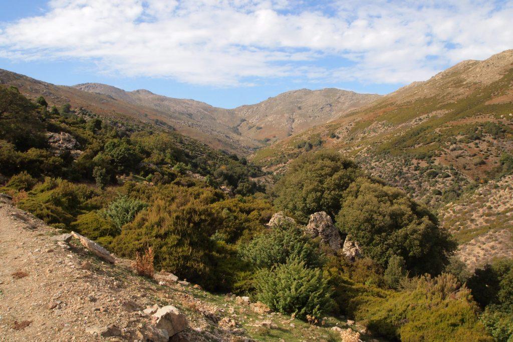 Blue zones: la natura dell'entroterra della Sardegna