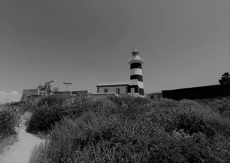 Foto in bianco e nero che raffigura il faro di Capo Sant'Elia circondato dal verde