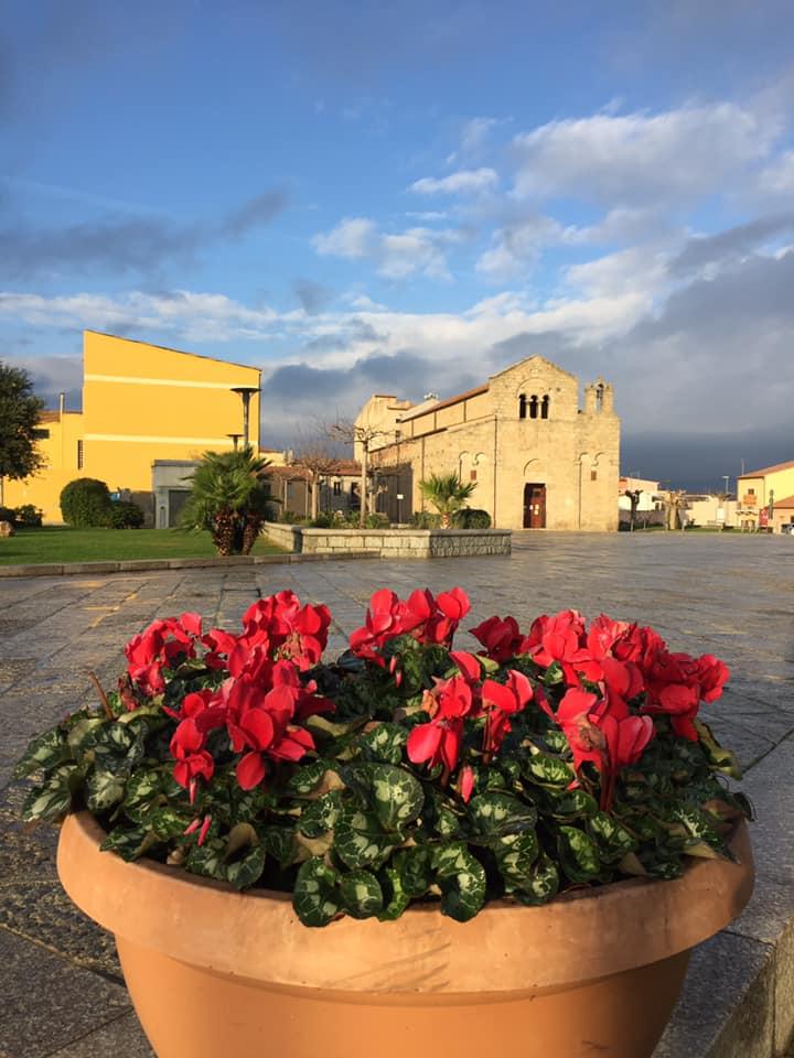 un vaso di ciclamini rossi in primo piano e sullo sfondo una chiesa Olbia Miracolo di Natale Basilica San Simplicio