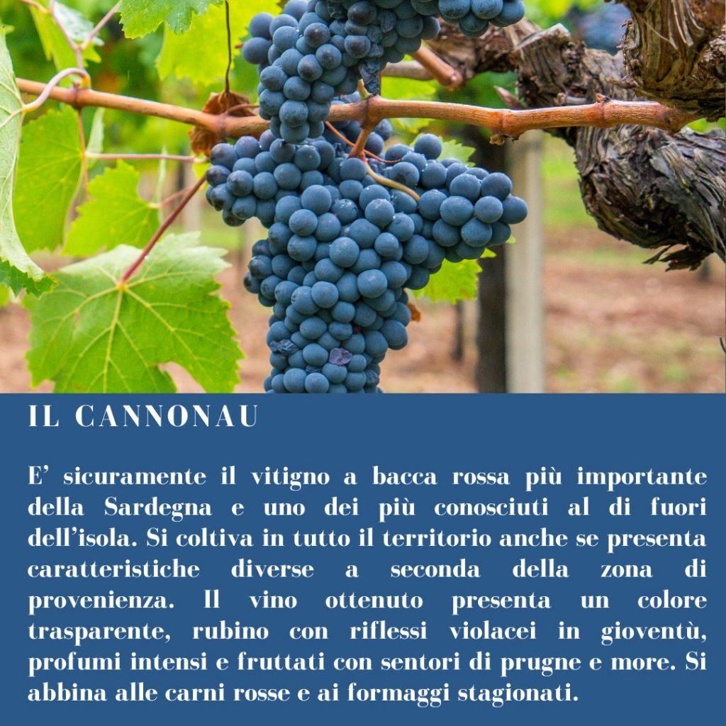 Uva Cannonau