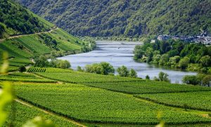 Cropped Paesaggio Montuoso.jpg