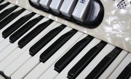 Fisarmonica - Fisarmonica Bianca