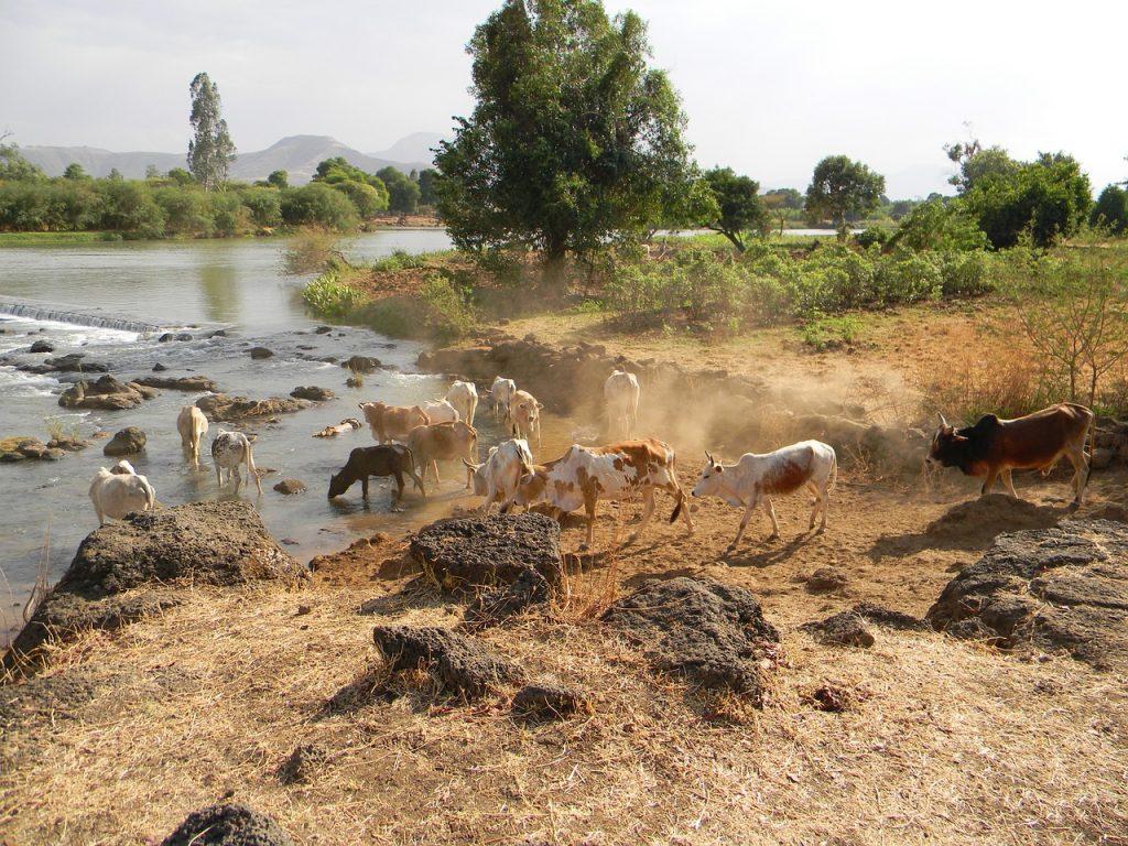Etiopia - Panorama Etiopia