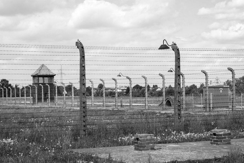 Shoah - Filo Spinato Auschwitz