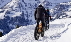 Bici Sulla Neve