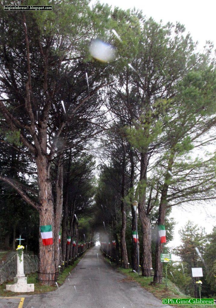 Sacrario - Viale Di Accesso Al Sacrario