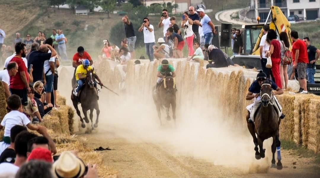 La gara equestre
