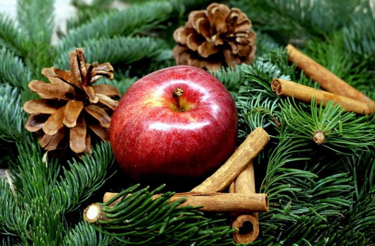 Mela e cannella tra le decorazioni natalizie