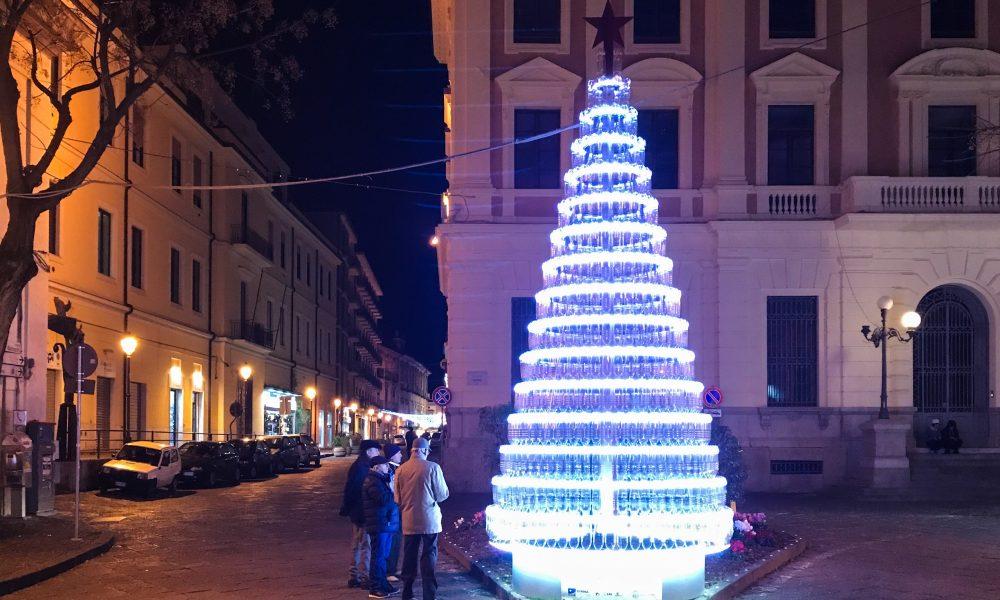 Caserta In Piazza Fiorisce L Albero Di Natale Ecologico