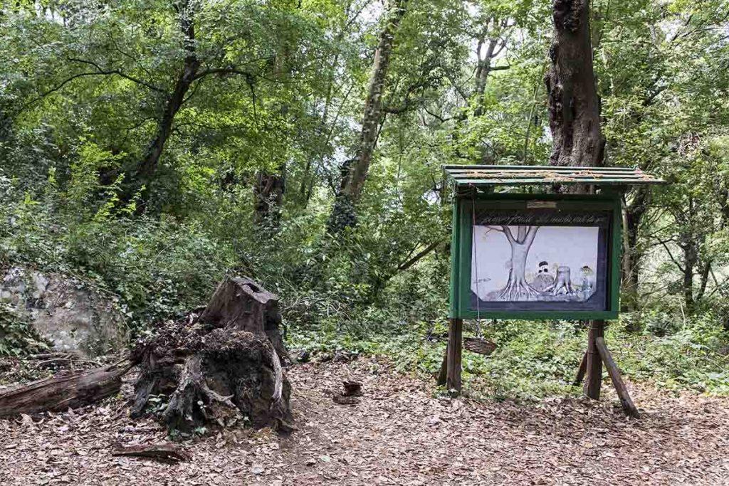 angolo didattico nel bosco