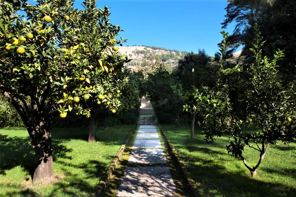 il giardino di palazzo cocozza a Caserta, aperto per Incontriamoci in giardino