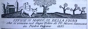 il bue della chiesa di Santa Maria della Vigna