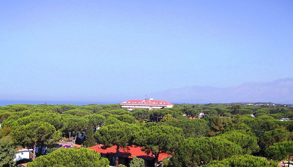 Baia Domizia e le sue peculiari case immerse nella pineta, che furono grande fonte di ispirazione per Monachesi